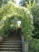 Rosentreppe im Park Babelsberg
